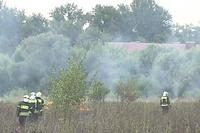 Терехово: «Москвичей экстренно эвакуируют из-за крупного пожара»!